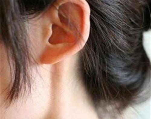 垂耳美容的价位详解